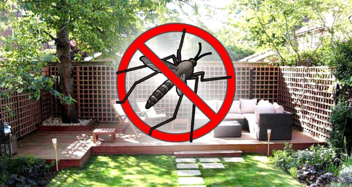 Обработать участок от комаров 53