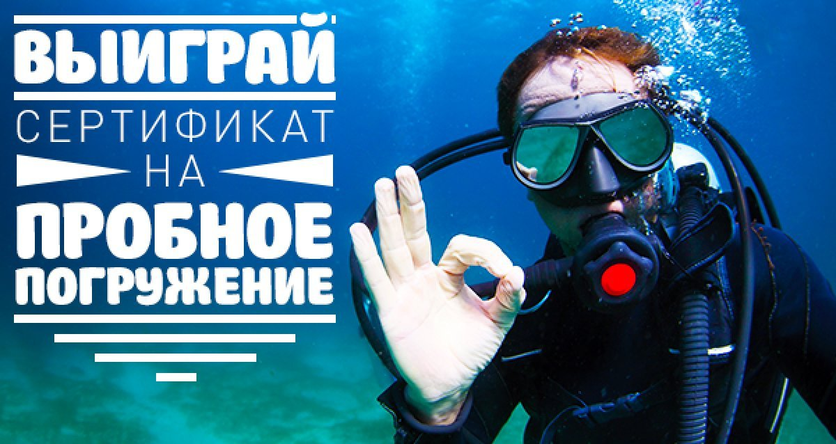Откройте для себя подводный мир! Розыгрыш пробного погружения — дайвинг!