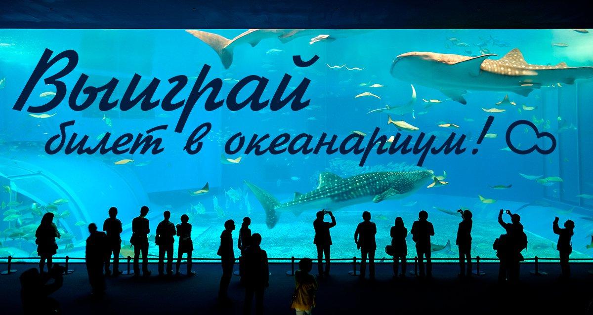 Изучите подводный мир! Розыгрыш билета в океанариум!