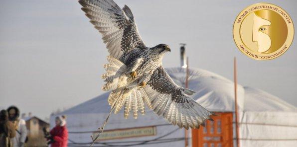 -52% на соколиную охоту в экопарке «Сокольник»