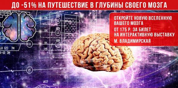 До -51% на билеты на выставку «Мозг: Вселенная внутри нас»