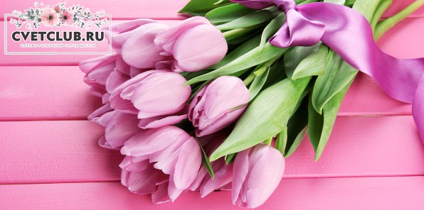 От 23 р. за розы, 40 р. за тюльпаны от cvetclub.ru
