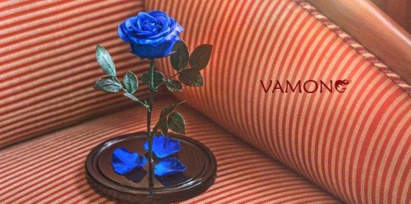 Скидка 30% на вечную розу