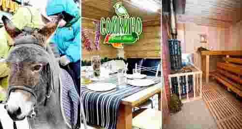 Скидка 50% на отдых в парк-отеле «Сойкино»