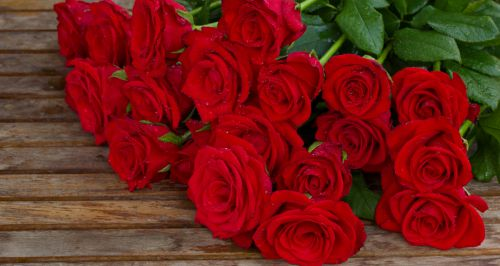 Салон цветов «Элегия»