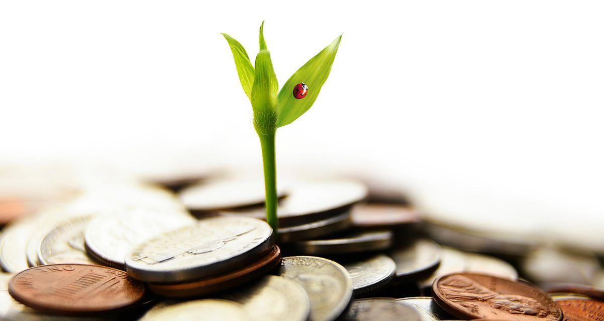 Освежаем знания: основные понятия в экономике