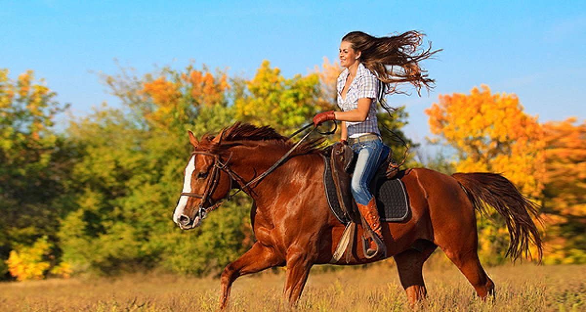 Станьте ближе к природе! Скидки до 74% на конные прогулки от КСК «Баллада»!